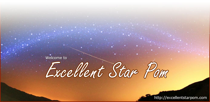 Excellent Star Pom